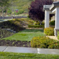 affordable-grass-cutting-businesses-in-Ocean Beach-CA