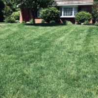 the-yard-cutting-businesses-in-West Chester-PA