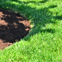 local-lawn-care-services-in-Windemere-TX
