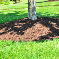 residential-lawn-cutting-businesses-in-McMinnville-OR