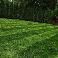 grass-cutting-businesses-in-Medford-MA