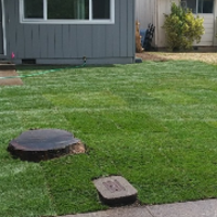 local-lawn-cutting-services-in-Eugene-OR