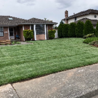 local-lawn-care-services-in-Lynnwood-WA