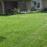 local-lawn-cutting-services-in-Franklin-WI