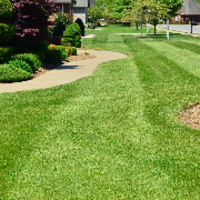 affordable-grass-cutting-businesses-in-Cranston-RI