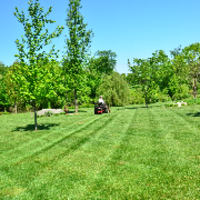 grass-cutting-businesses-in-Warwick-RI