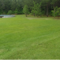 affordable-lawn-services-in-Savannah-GA
