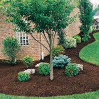 affordable-landscaping-maintenance-services-in-Caldwell-ID