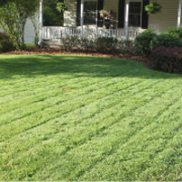 affordable-grass-cutting-businesses-in-Twin Cities-MN