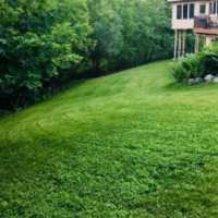 affordable-landscaping-maintenance-services-in-Columbia Heights-MN