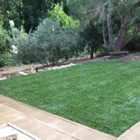 affordable-landscaping-maintenance-services-in-Del Mar-CA