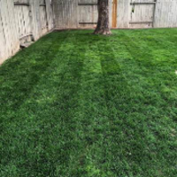 cheap-lawn-cutting-businesses-in-Provo-UT