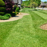 grass-cutting-businesses-in-Clearfield-UT