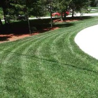 grass-cutting-businesses-in-St Clair Shores-MI