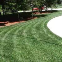 lawn-care-services-in-St Clair Shores-MI