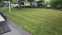 local-lawn-and-landscape-maintenance-services-near-me-in-Syracuse-NY
