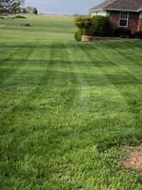 grass-cutting-businesses-in-Grand Forks-ND