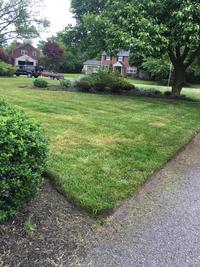 lawn-maintenance-in-Wilmington-DE