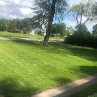lawn-care-services-in-Madison-WI