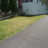 the-yard-cutting-businesses-in-Waterbury-CT