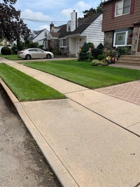 the-yard-cutting-businesses-in-Poughkeepsie-NY
