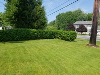 residential-lawn-cutting-businesses-in-Elyria-OH