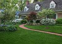 local-lawn-and-landscape-maintenance-services-near-me-in-Lake Elsinore-CA