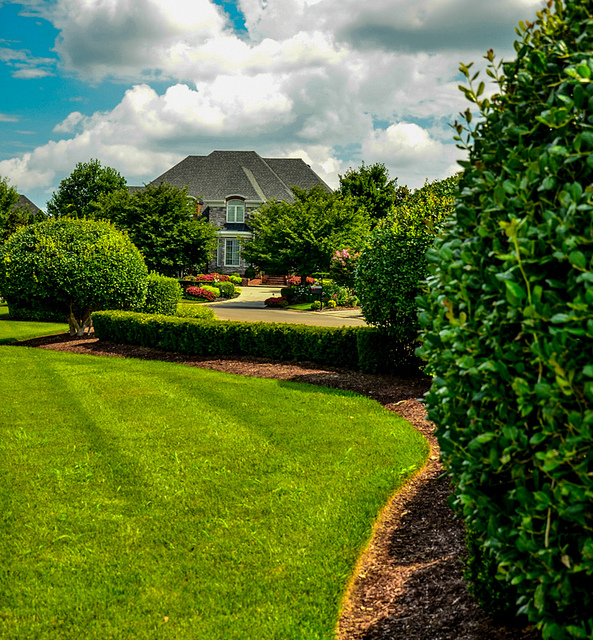 Homeowners Guide Planning A Successful Landscape Design