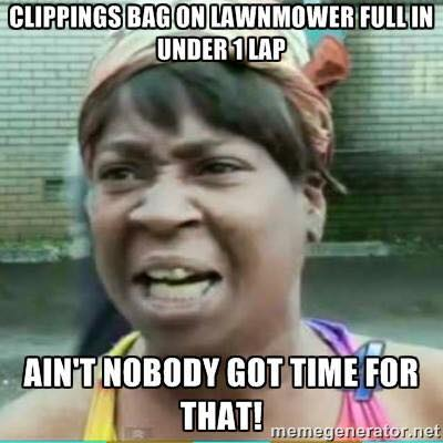 Lawn Mower Meme  Bagging the lawn is a pain, and frankly put, ain't nobody got time for that! That is why i use my mulching kit to compost the lawn.