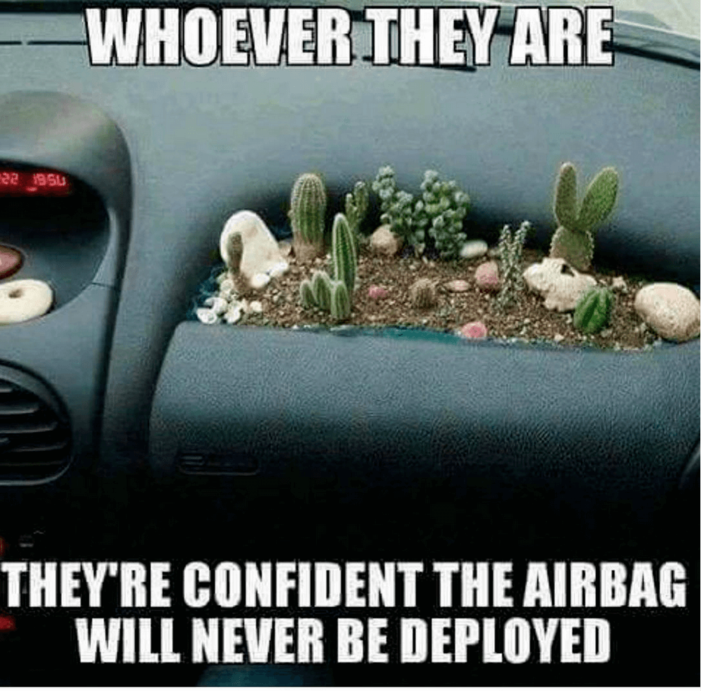 Landscaping meme  Many stick with the hula girl on the dashboard, however some go one step farther. Growing cactus on the dashboard is a feat to be admired, but riding in the passenger seat is an act of courage.