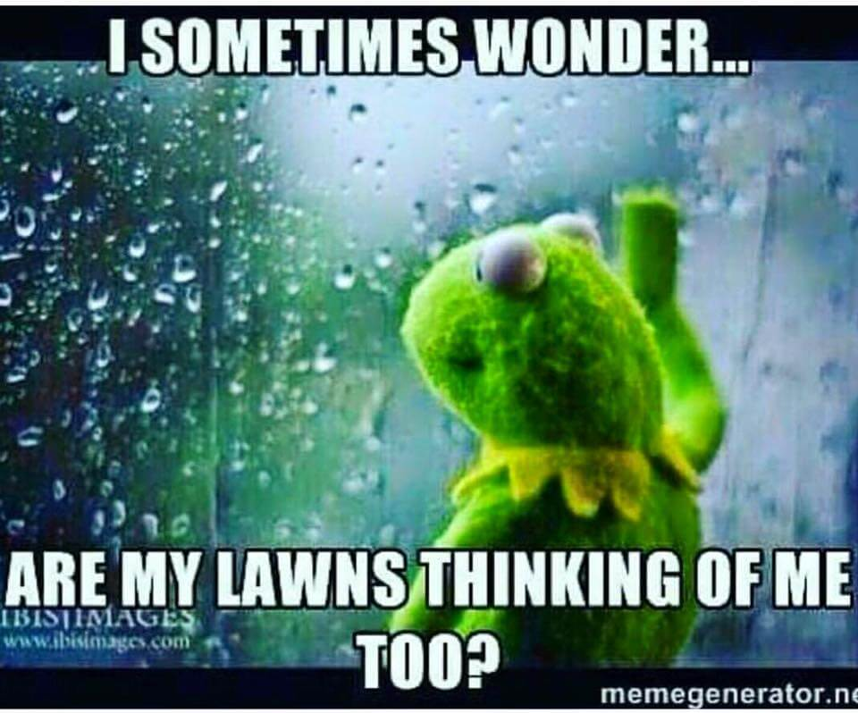 Lawn Care Meme  This meme truly puts the Care into the word lawn care. On rainy days, lawn care providers are always thinking f their lawns, whether they like it or not. But are the lawns thinking of them too?