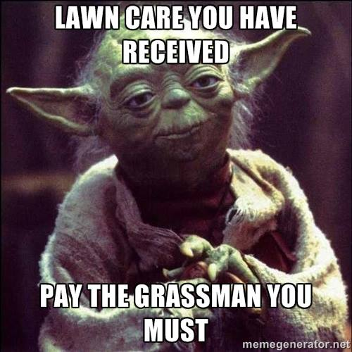Lawn Care and Landscaping Meme  When you are running a lawn care business, you have to collect that cash. This meme has great advice from Yoda for running your lawn care business.