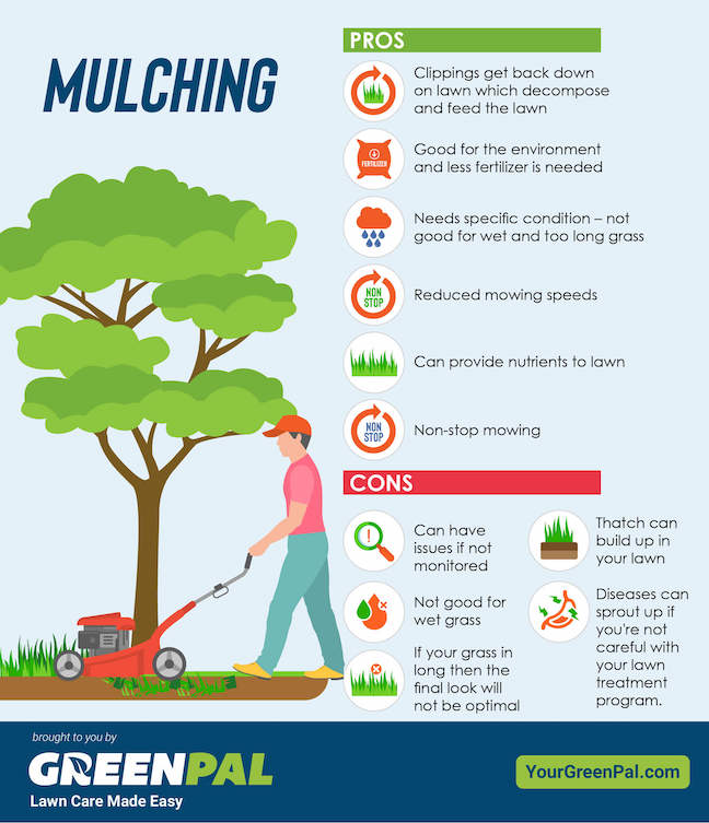 Mulching Grass Clippings Pros and Cons