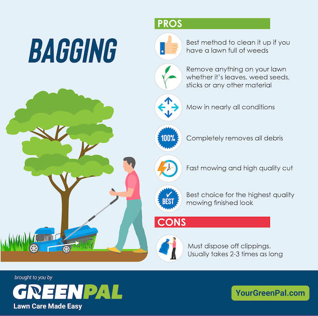 Bagging Grass Clippings Pros and Cons