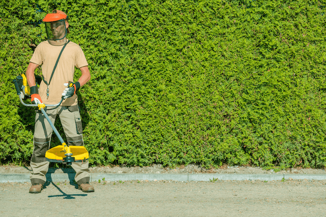 lawn care pro with commercial weedeater