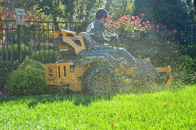 Eco friendly lawn care