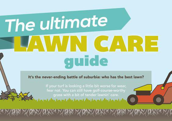 Lawn care guide 1