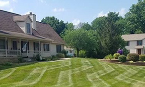 Shopping for Top rated lawn fertilizers?