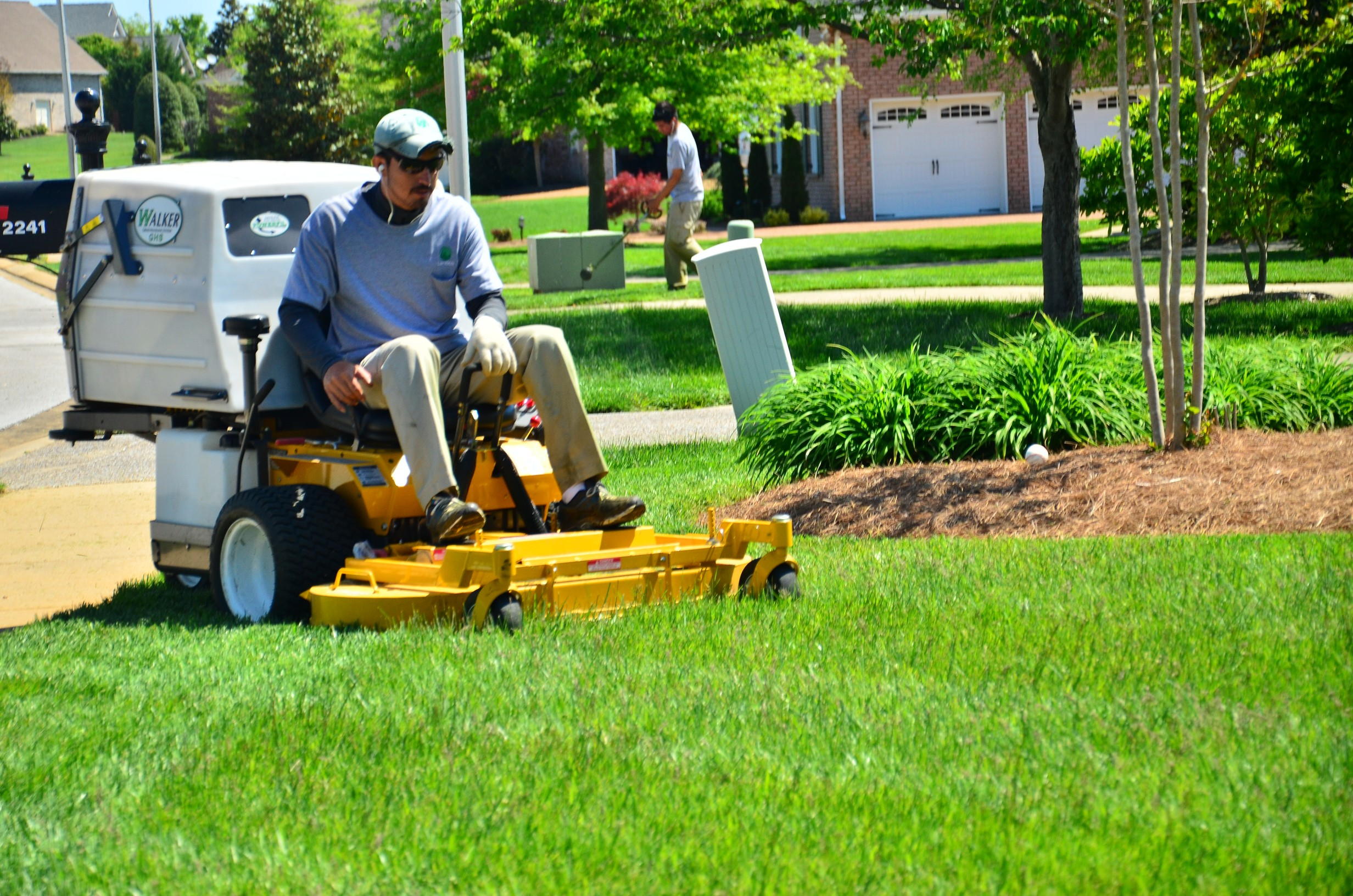 Lawn care and landscaping blog for Lawn care and maintenance