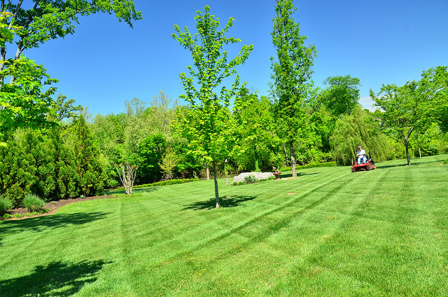 Lawn Care Service in St Petersburg Florida