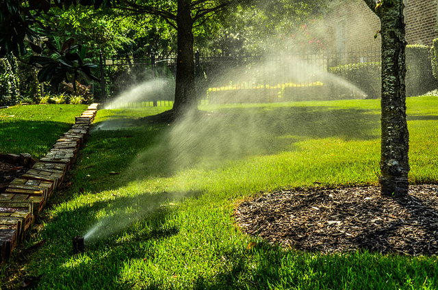 GreenPal Lawn Care in St Petersburg Florida