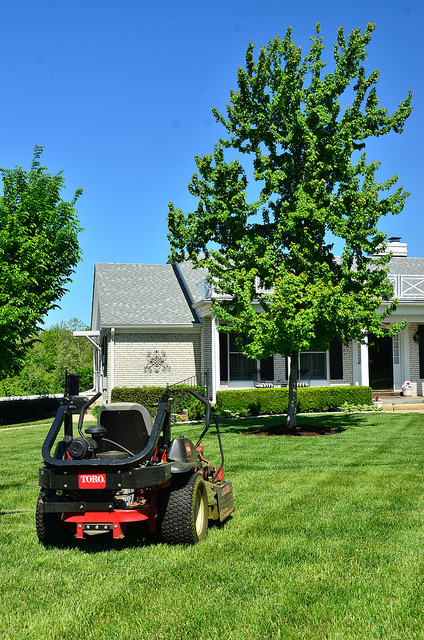 lawn care in Atlanta Georgia