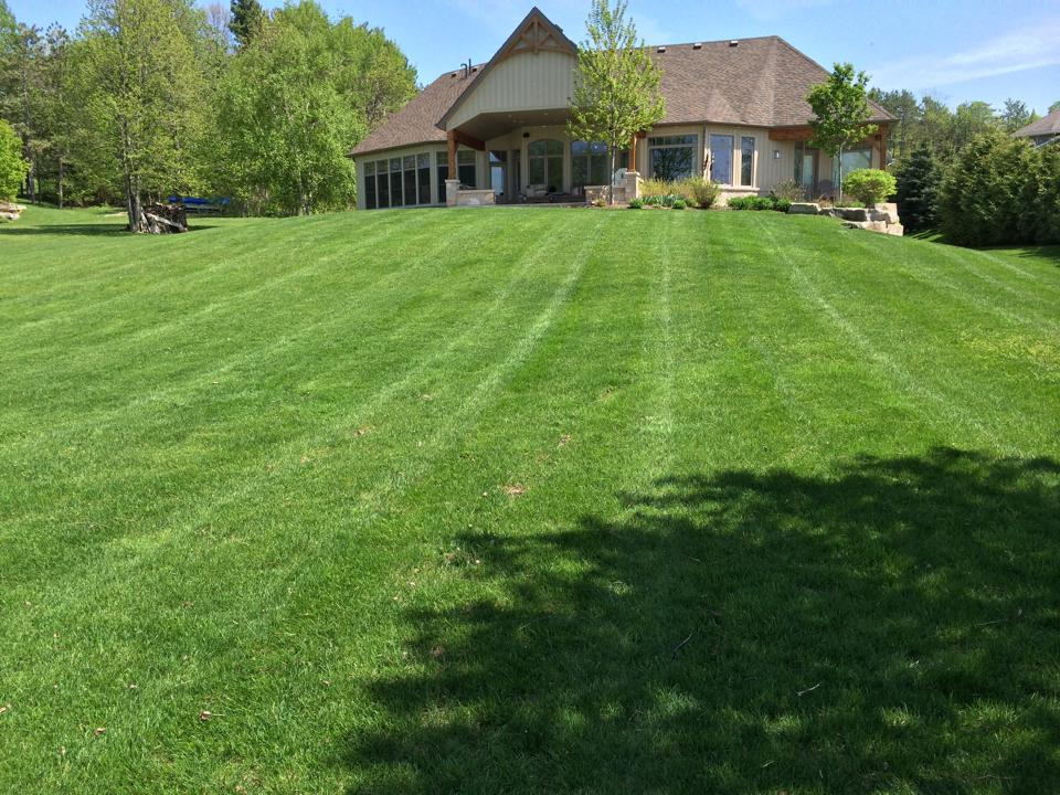 Get green grass with GreenPal lawn care professionals
