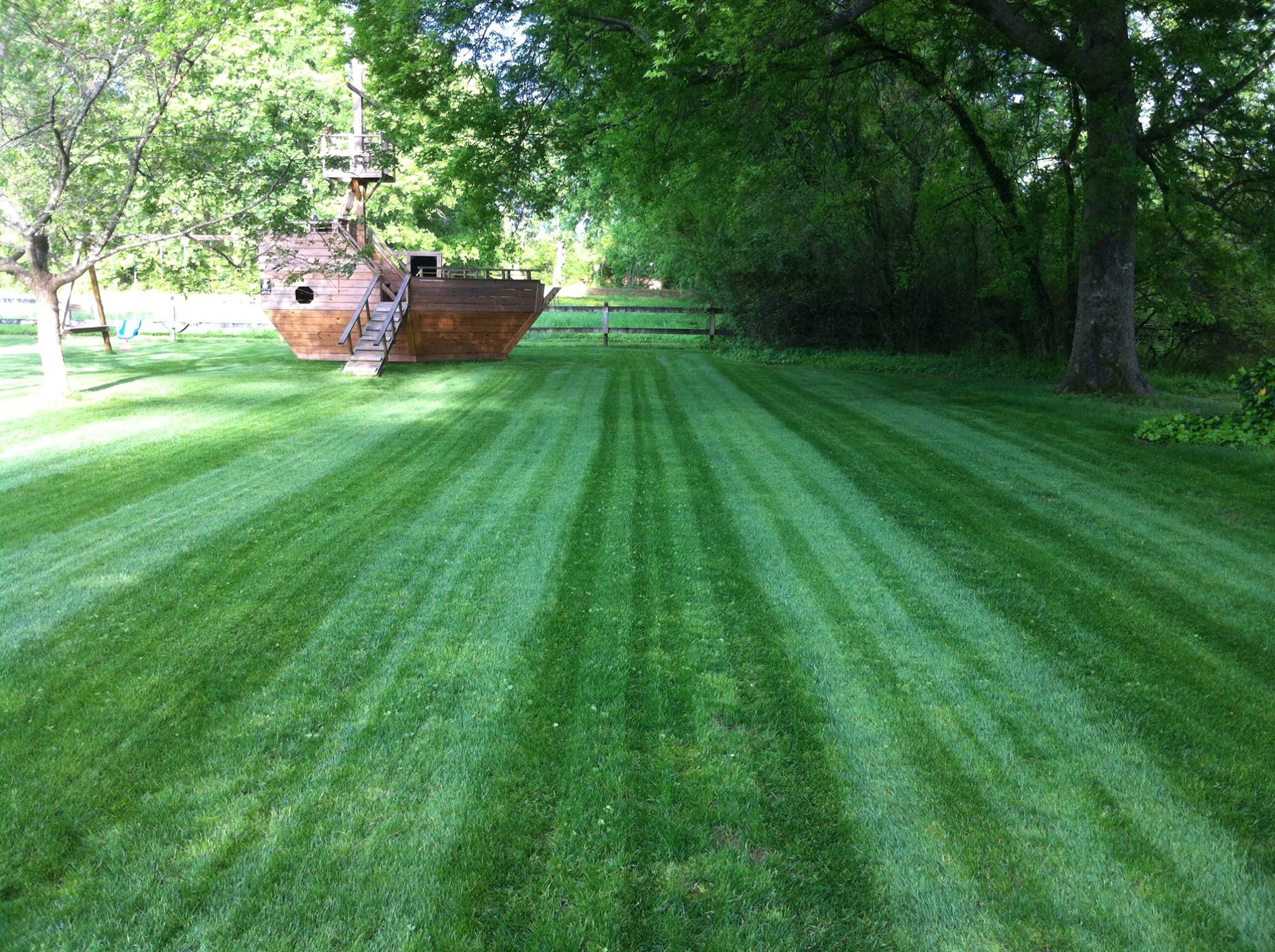 don u0027t want to mow your grass check out these 5 alternatives