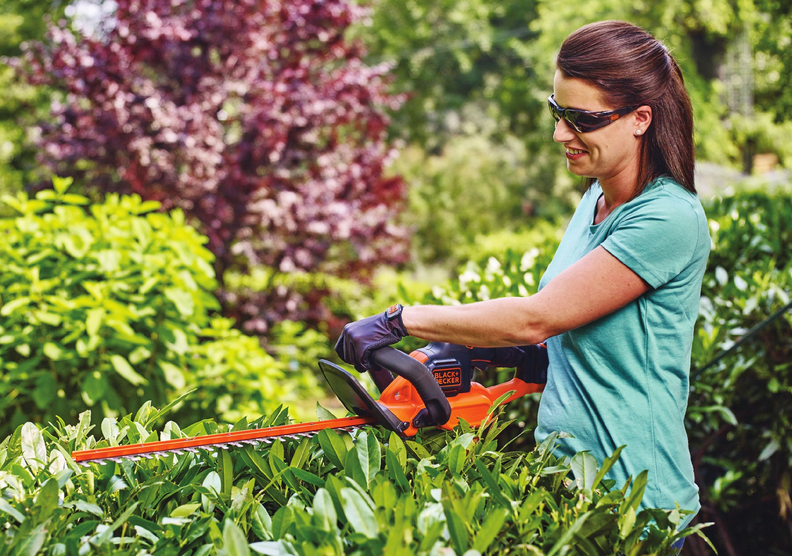 Electric hedge trimmers are lightweight, powerful, affordable and quiet. However, your working range is limited by the length of the extension cord.