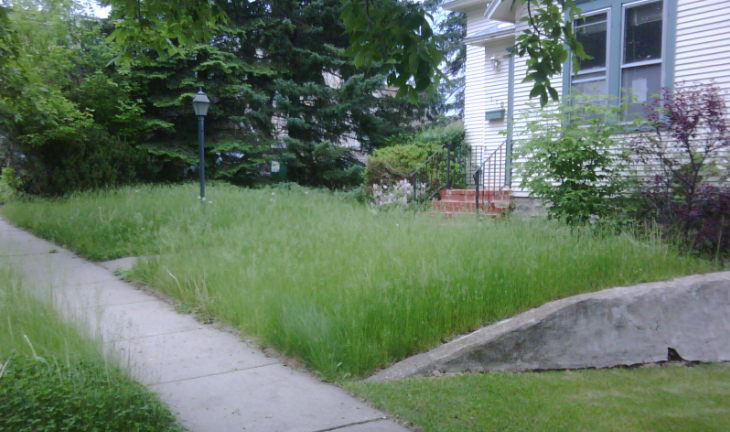 Fines, Liens, and Foreclosure for not mowing the grass?