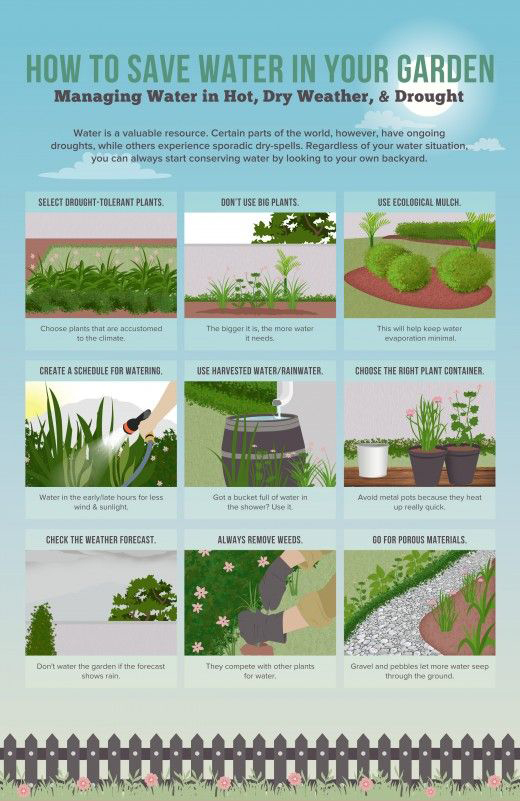 How to Save Water in Your Lawn