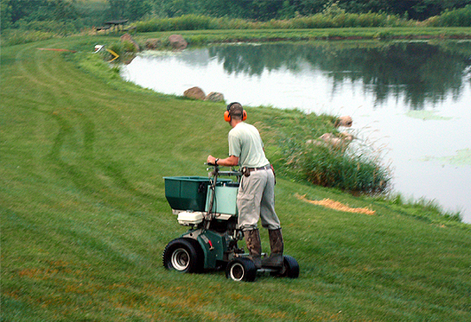 When should I fertilize my lawn??