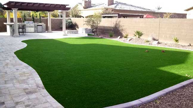 Don T Want To Mow Your Grass Check Out These 5 Alternatives