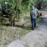 Local Lawn care service near me in Pinellas Park, FL, 33781